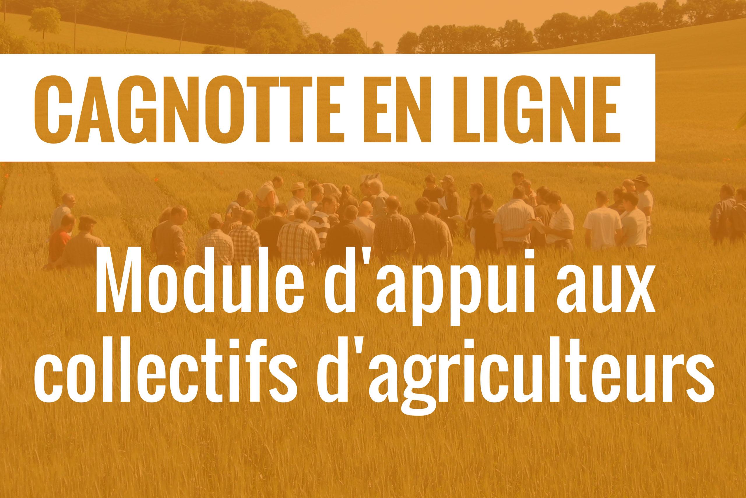 Une cagnotte en ligne pour financer un module d'appui aux collectifs d'agriculteurs
